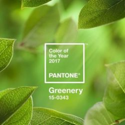 Pantone's Colour of the Year 2017 Symbolizes a Fresh Start