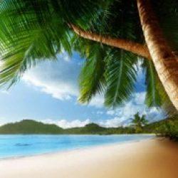 Experience Mauritius – An Island Paradise